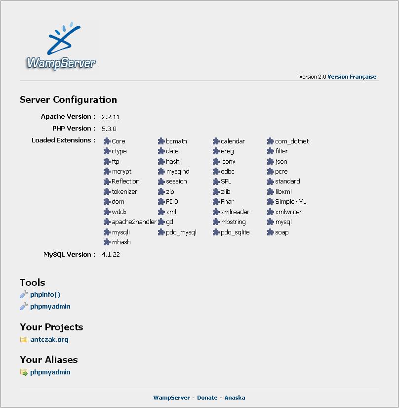 Widok strony głównej serwera.